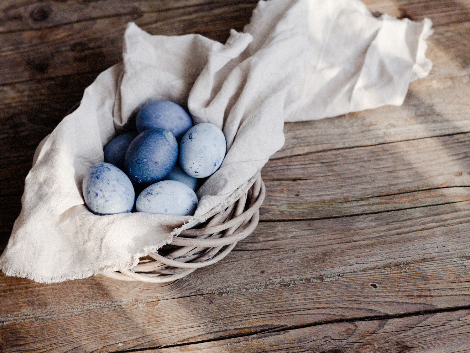 indigo_easter_blue_003